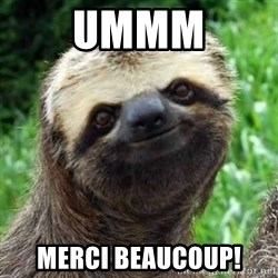 Sarcastic Sloth - UMMM Merci Beaucoup!