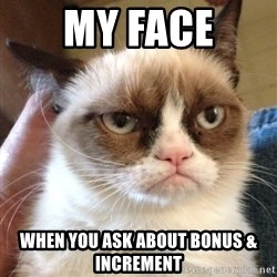 Grumpy Cat 2 - My Face When You Ask About Bonus & Increment