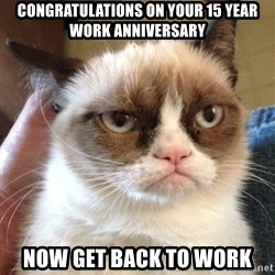 Grumpy Cat 2 - CONGRATULATIONS ON YOUR 15 YEAR WORK ANNIVERSARY NOW GET BACK TO WORK