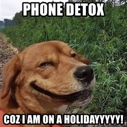 dogweedfarm - Phone Detox Coz I am on a holidayyyyy!