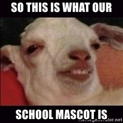 10 goat - so this is what our school mascot is