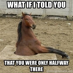 Hole Horse - What if I told you That you were only halfway there