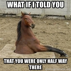 Hole Horse - what if i told you that you were only half way there