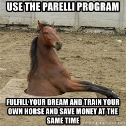 Hole Horse - use the parelli program fulfill your dream and train your own horse and save money at the same time