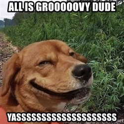 dogweedfarm - All is grooooovy dude yassssssssssssssssssss