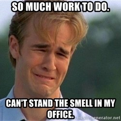 Thank You Based God - So much work to do. Can't stand the smell in my office.