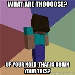Depressed Minecraft Guy - WHAT ARE THOOOOSE? UP YOUR NOES, THAT IS DOWN YOUR TOES?