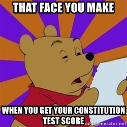 Skeptical Pooh - that face you make when you get your constitution test score