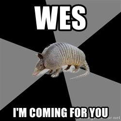 English Major Armadillo - Wes I'm coming for you