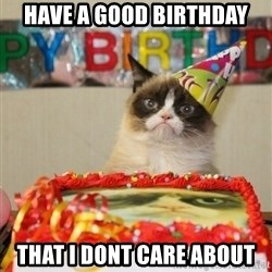 Grumpy Cat Birthday hat - have a good birthday that i dont care about