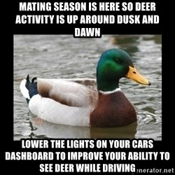 advice mallard - Mating season is here so Deer activity is up around dusk and dawn Lower the lights on your cars dashboard to improve your ability to see Deer while driving