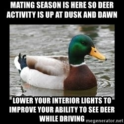 advice mallard - Mating season is here so Deer activity is up at dusk and dawn Lower your interior lights to improve your ability to see Deer while driving