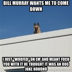 """Roof Dog - bill murray wants me to come down i just """"woofed"""" on em' and meant fuck you with it he thought it was an dog joke höhöhö"""