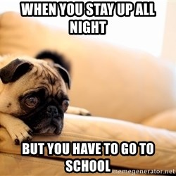 Sorrowful Pug - when you stay up all night  but you have to go to school