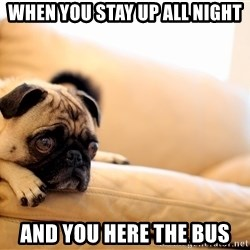 Sorrowful Pug - when you stay up all night and you here the bus