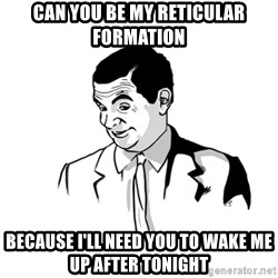 if you know what - can you be my reticular formation  because i'll need you to wake me up after tonight