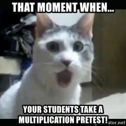 Surprised Cat - That moment when... Your students take a multiplication pretest!