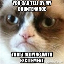 angry cat asshole - you can tell by my countenance that i'm dying with excitement