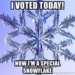 Special Snowflake meme - i voted today! now i'm a special snowflake