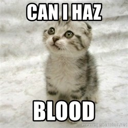 Can haz cat - Can I haz Blood