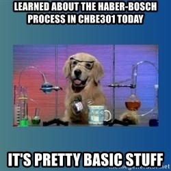 Chemistry Dog - Learned about the Haber-Bosch process in Chbe301 today It's pretty basic stuff