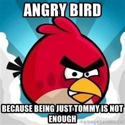 Angry Bird - Angry Bird Because being just Tommy is not enough