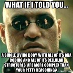 What If I Told You - What if I told you... A single living body, with all of its DNA coding and all of its cellular structures, are more complex than your petty reasoning?