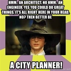 Harry Potter Sorting Hat - Hmm.. an architect, no hmm.. an engineer. Yes you could do great things, it's all right here in your head. No? Then better be  A City Planner!