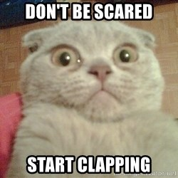 GEEZUS cat - Don't be scared start clapping