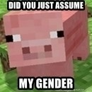 Minecraft PIG - DID YOU JUST ASSUME MY GENDER