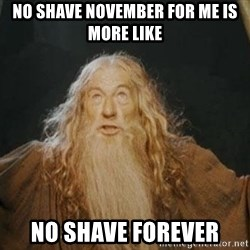You shall not pass - no shave November for me is more like no shave forever