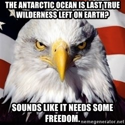 Freedom Eagle  - The antarctic Ocean is last true wilderness left on Earth? Sounds like it needs some freedom.
