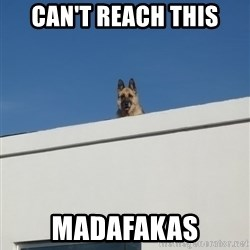 Roof Dog - CAN'T REACH THIS MADAFAKAS