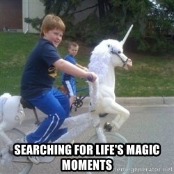 unicorn -  Searching for life's magic moments