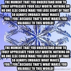 Special Snowflake meme - The moment that you understand how to truly appreciate your self worth. Nothing or no one else could make you lose sight of that. So always embrace what makes you....YOU...because that's what makes you valuable to this world! The moment that you understand how to truly appreciate your self worth. Nothing or no one else could make you lose sight of that. So always embrace what makes you....YOU...because that's what makes you valuable to this world!