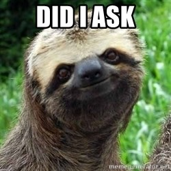 Sarcastic Sloth - Did I Ask
