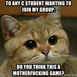 Do you think this is a motherfucking game? - To any C student wanting to join my group: Do you think this a motherfucking game?