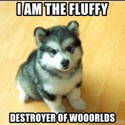 Baby Courage Wolf - i am the fluffy destroyer of wooorlds