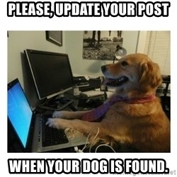 No Computer Idea Dog - Please, update your post when your dog is found.