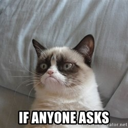 Grumpy cat 5 -  If anyone asks