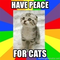 Cute Kitten - Have Peace for Cats