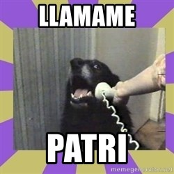 Yes, this is dog! - llamame Patri