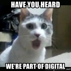 Surprised Cat - Have you heard We're part of digital