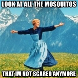 Sound Of Music Lady - look at all the mosquitos  that im not scared anymore