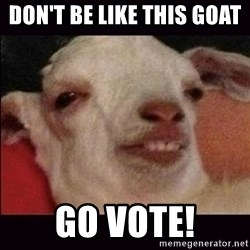 10 goat - don't be like this goat  go vote!