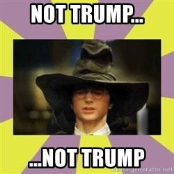 Harry Potter Sorting Hat - not trump... ...not trump