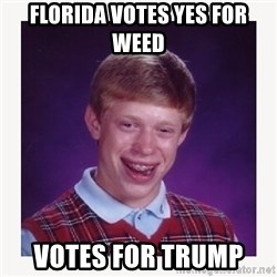 nerdy kid lolz - FLORIDA VOTES YES FOR WEED  VOTES FOR TRUMP