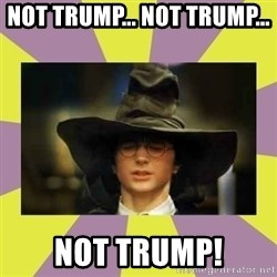Harry Potter Sorting Hat - Not trump... not trump...  NOT TRUMP!