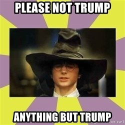 Harry Potter Sorting Hat - PLEASE NOT TRUMP ANYTHING BUT TRUMP