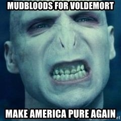 Angry Voldemort - Mudbloods for Voldemort Make America pure again